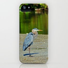 I Write You In My Songs iPhone Case