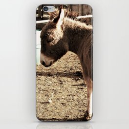 Eeyore iPhone Skin