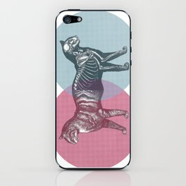 In which the cat is dead and alive iPhone Skin
