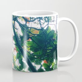 skylight Coffee Mug