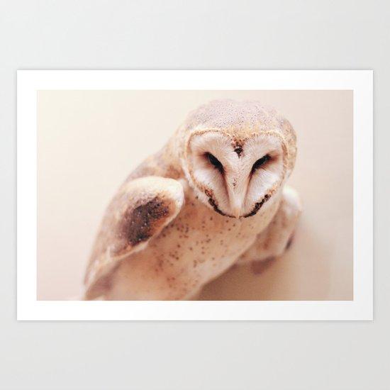 Swift  Art Print