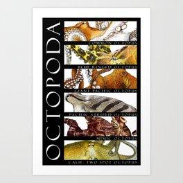 Octopus of the World Art Print
