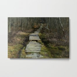 Fairy Path Metal Print