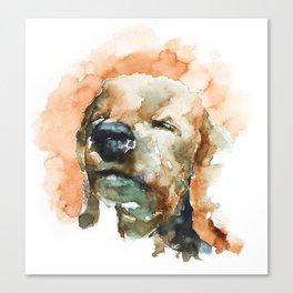 DOG#22 Canvas Print