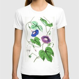 A Purging Pharbitis Vine in full blue and purple bloom - Vintage illsutration T-shirt