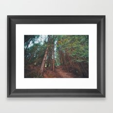 into the woods 05 Framed Art Print
