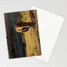 Monkey Business I Stationery Cards