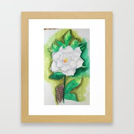 Jasmin Framed Art Print
