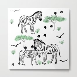 Zebra Walks Metal Print