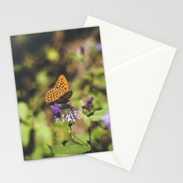 Butterfly on the wild flowers Stationery Cards
