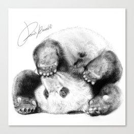 panda cute - panda simpatico - adorable panda Canvas Print