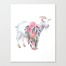 goat with flower crown Canvas Print