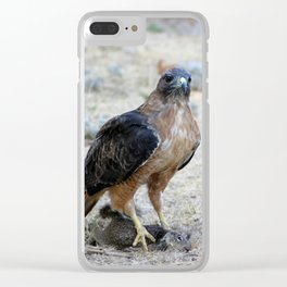 Red Tailed Hawk Catch Clear iPhone Case