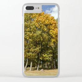 Yellow maple foliage Clear iPhone Case