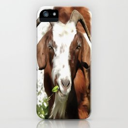 Portrait of a Horned Goat  iPhone Case