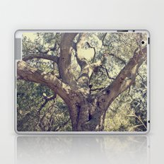 Mother Tree Laptop & iPad Skin