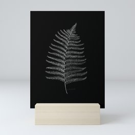 New Zealand Fern Leaf Mini Art Print