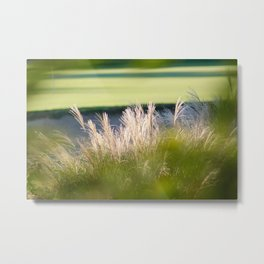 Bokah in the greens Metal Print