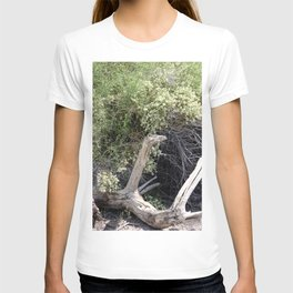 Weathered Log in Coachella Valley Wildlife Preserve T-shirt