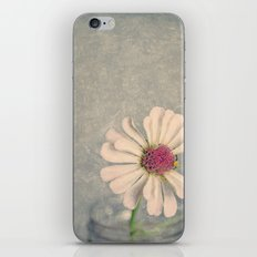 Zinnia Flower Still Life Painterly iPhone & iPod Skin
