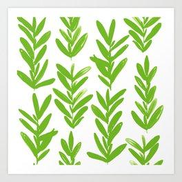 Sage Art Print