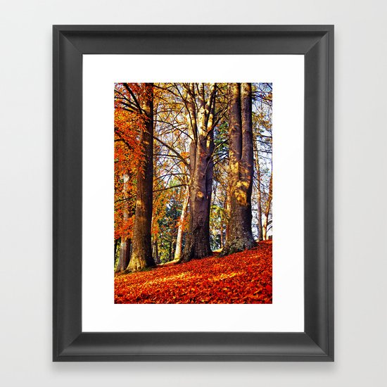 Autumn troika Framed Art Print