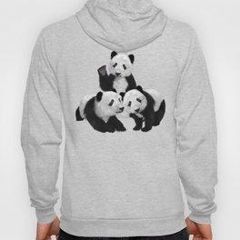 Panda Bear Cubs Love Hoody