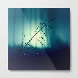 Blue Willow in the rain Metal Print