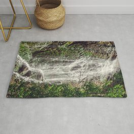 Feel the Cleansing Rug