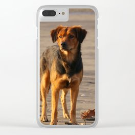 Life`s A Beach Clear iPhone Case