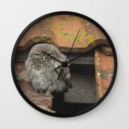 LITTLE OWL ON THE ROOF Wall Clock