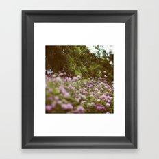 Among the Wildflowers Framed Art Print