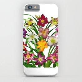 Display of daylilies II iPhone Case