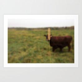 Walking the cow Art Print