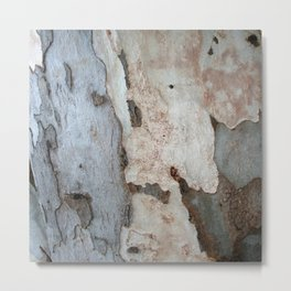 Bark Of A Eucalyptus Tree Metal Print