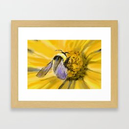 Beatrice the Bumble Bee Framed Art Print