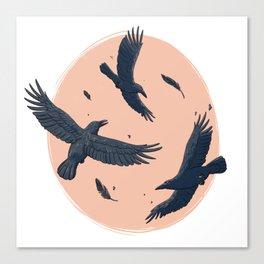 Crows Canvas Print