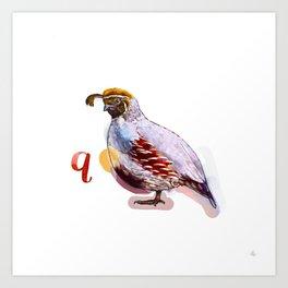 Quail (Alphabetical Animals) Art Print