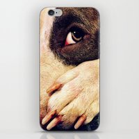 pitbull iPhone & iPod Skins featuring Pitbull profile by LeeAnnPoling