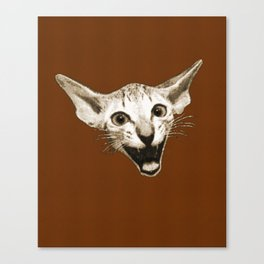 The Laughing Cat Canvas Print