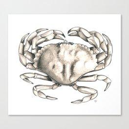 Rock Crab Canvas Print