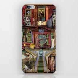 The Museum Shelf iPhone Skin
