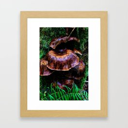 Fairy Condos Framed Art Print