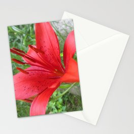 Floret Stationery Cards