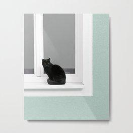 Black Cat on Aqua Green Blue Metal Print