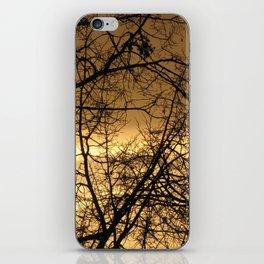 Hour Of Dawn iPhone Skin