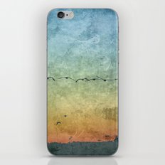 Birds in Flight iPhone & iPod Skin