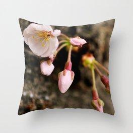 Spring Blooms Throw Pillow