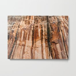 The red dust and the burnt cliffs Metal Print