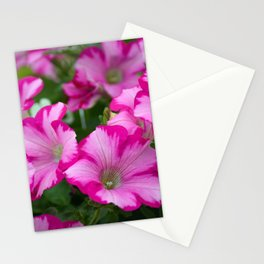 Pink striped petunias Stationery Cards